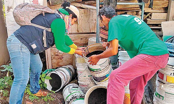 Registran 514 casos de dengue en Morelos