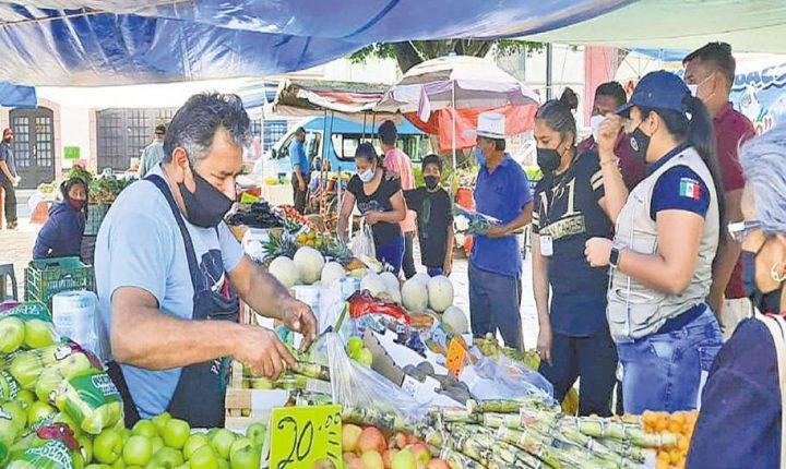 Hasta el 28 de enero permitirán abrir tianguis en Tlayacapan