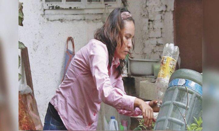 Exhorta SSM a eliminar criaderos de moscos en viviendas y espacios públicos
