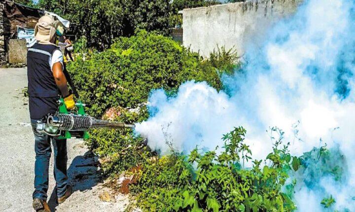 En aumento los casos de dengue