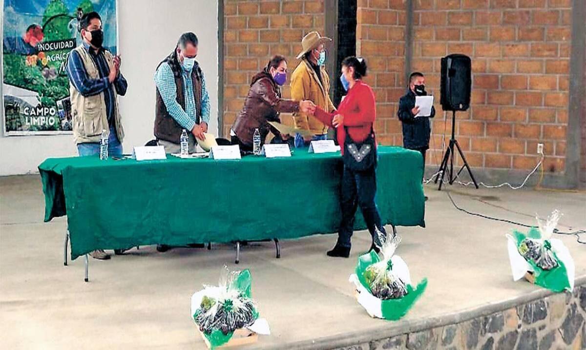Certifican a productores de frutos de los Altos de Morelos