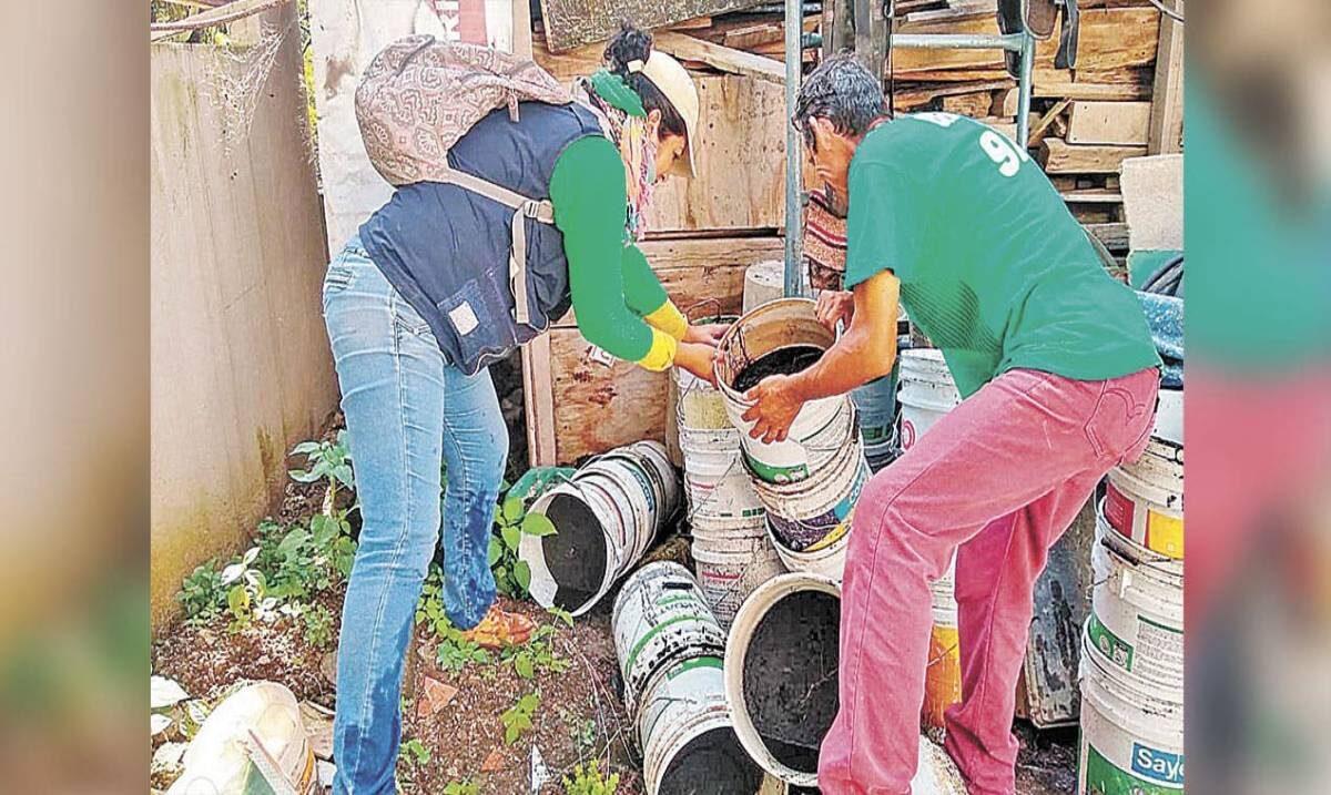 Suben los casos de dengue en Morelos; registran 101 nuevos casos