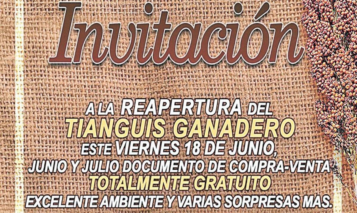 Reabrirán tianguis de Tepalcingo