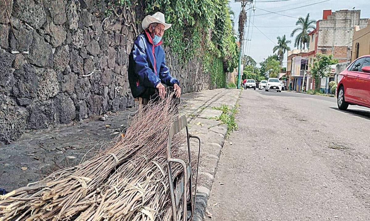 Don Quintín vende escobas o no come, en Morelos
