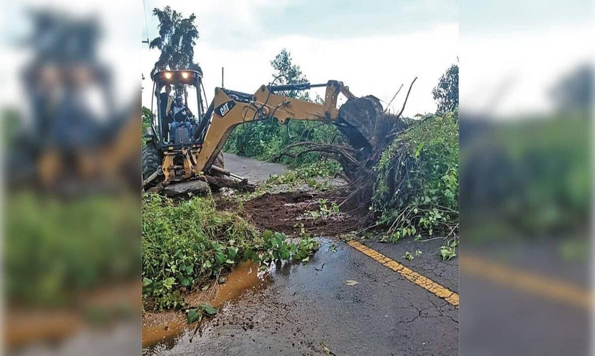 Apoya Sedagro con limpieza en carreteras
