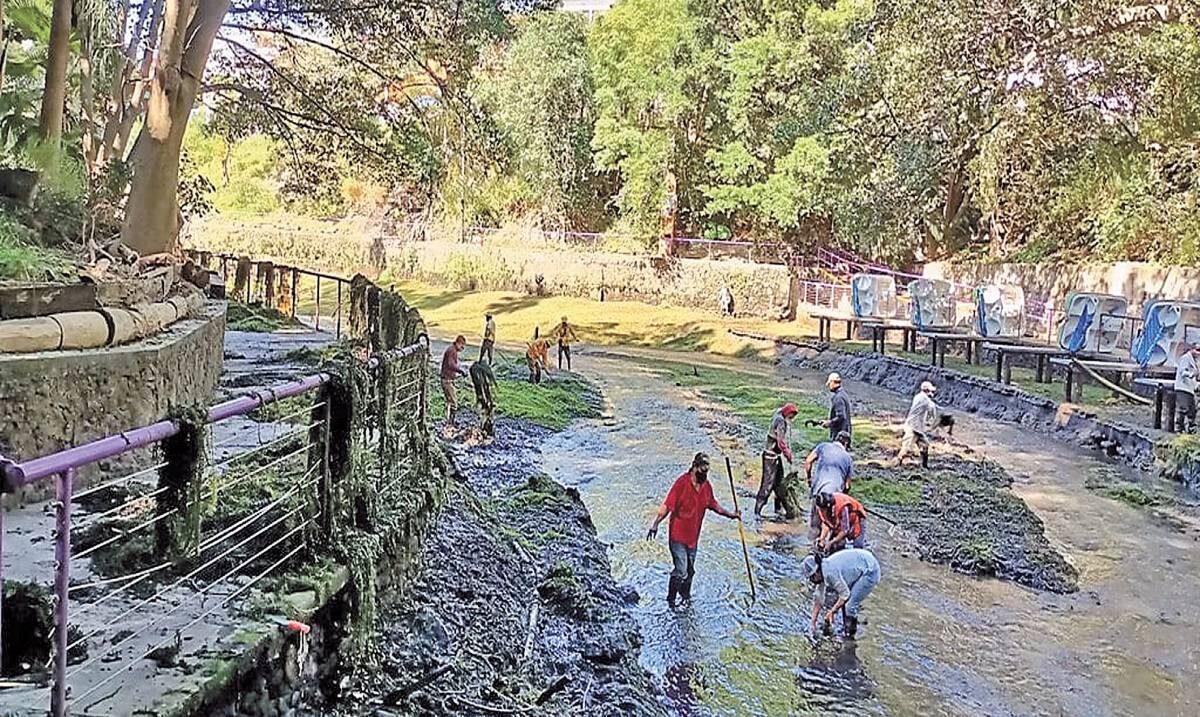 Desazolvan el lago del Parque Barranca Chapultepec